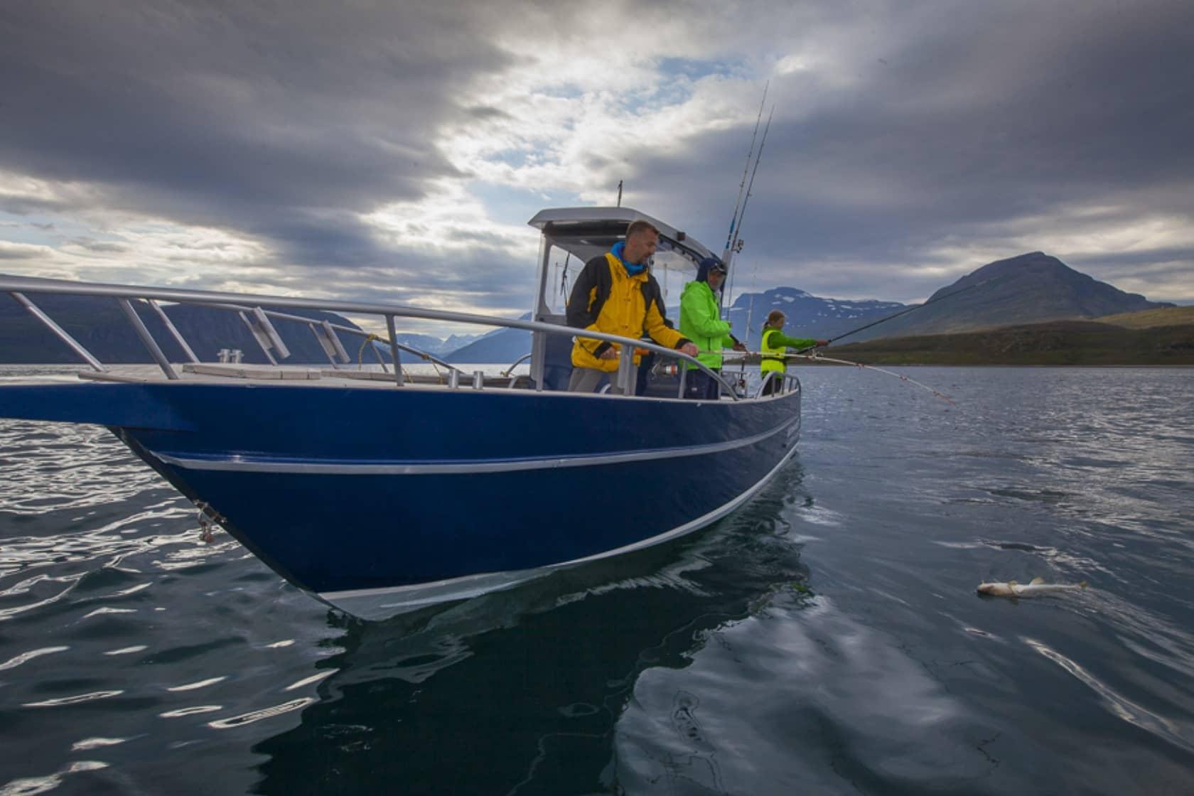 Pływamy Nałodziach Aluminiowych Viking 13