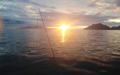 Wyprawa nawyspę Uløya, sierpień 2021